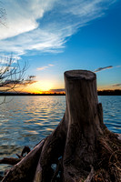 Stumped Sunset